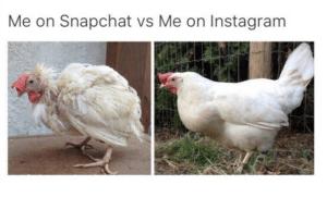 teens social chicken on snap vs insta