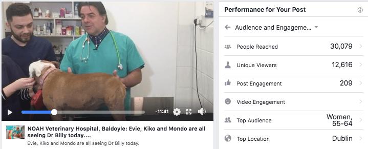 facebook live for vets